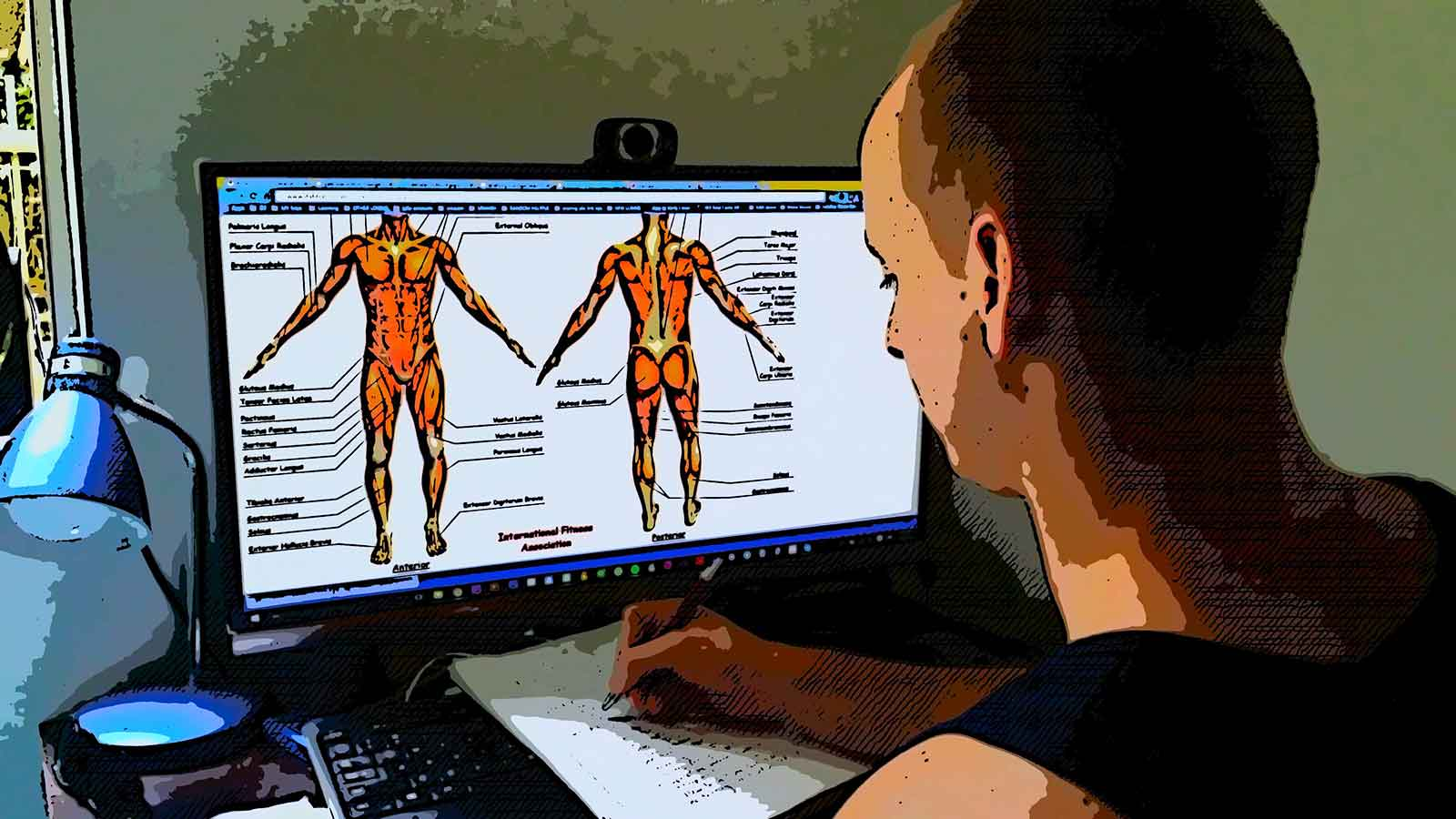Studying anatomy online