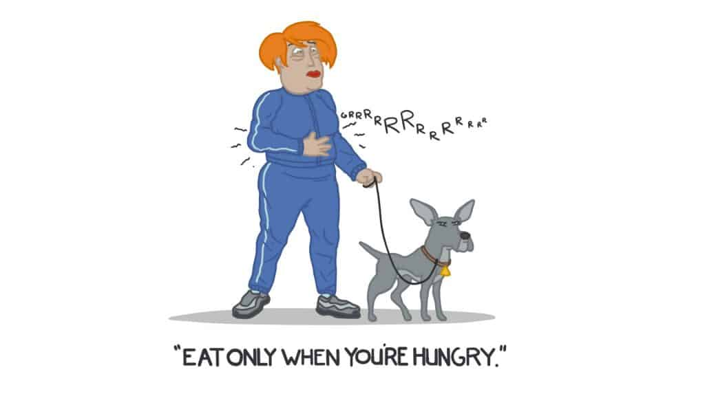 eat only when your hungry