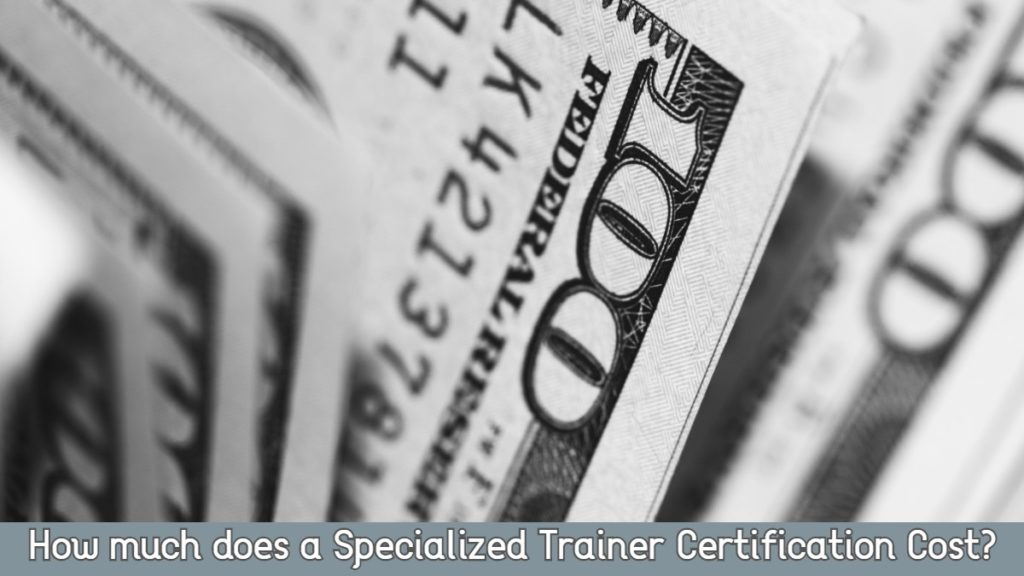 Specialized Trainer Certification Cost