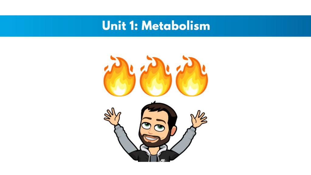 ISSA Unit 1 - Metabolism