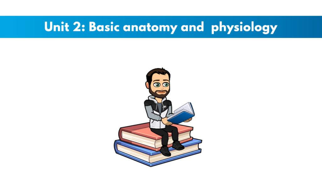 ISSA Unit 2 - Basic anatomy and physiology