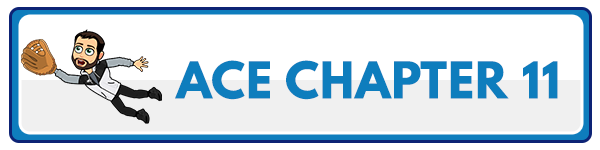 ACE CPT Chapter 12 - The ACE Integrated Fitness Training Model in Practice 2