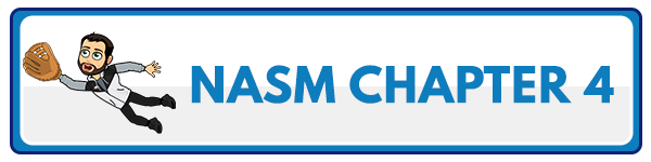 NASM 6th Edition chapter 5 - Human Movement Science 4