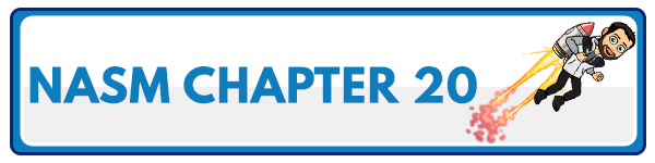 NASM 6th Edition chapter 19 - Lifestyle Modification and Behavioral Coaching 1