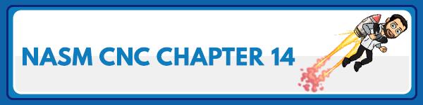 NASM CNC Chapter 13: Supplements 1