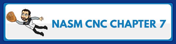 NASM CNC Chapter 8: Fats 2