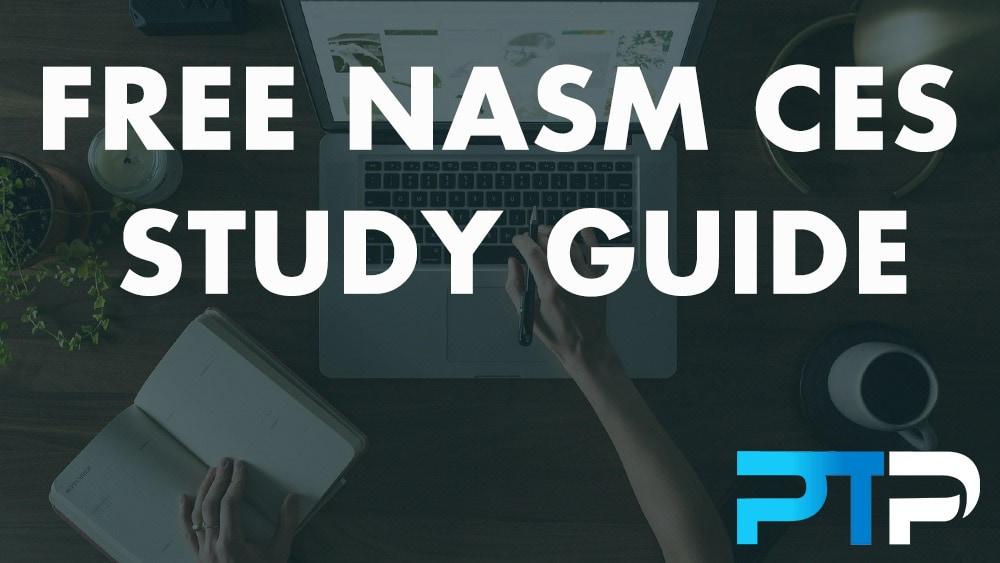 FREE NASM CES Study Guide