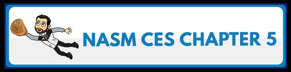 NASM CES Chapter 6: Integration Techniques 3