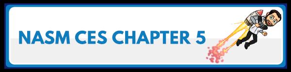 NASM CES Chapter 4: Lengthening Techniques 2