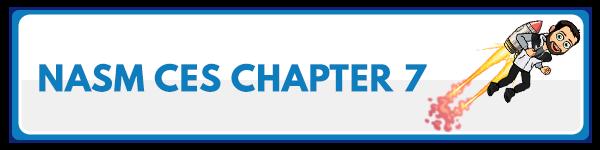 NASM CES Chapter 6: Integration Techniques 2