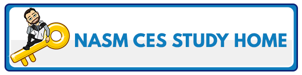 NASM CES Chapter 17: Self-Care and Recovery 4
