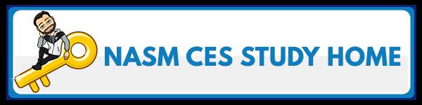 NASM CES Chapter 6: Integration Techniques 4