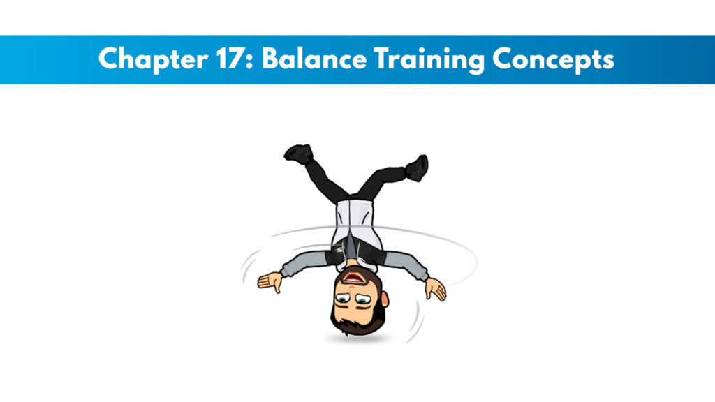 NASM CPT 7th Edition Chapter 17: Balance Training Concepts 1