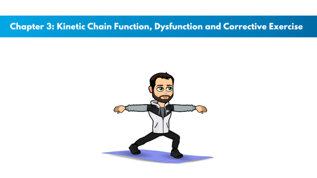 NCSF Personal Training Study Guide Chapter 3 – Kinetic Chain Function, Dysfunction, and Corrective Exercise 1